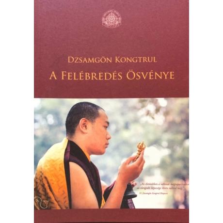 jamgon-kongtrul-rinpoche-a felebredes-osvenye-konyv